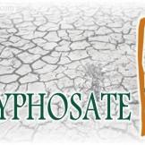 Glyphosate-Monsanto-Logo-Cracked-Earth