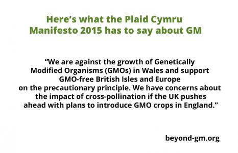 PlaidCymru manifesto
