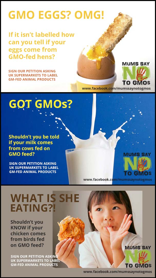 Gmo Labelling The Battle To Keep Corporations Honest