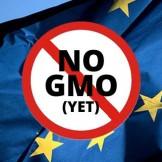 EU No GMO-med