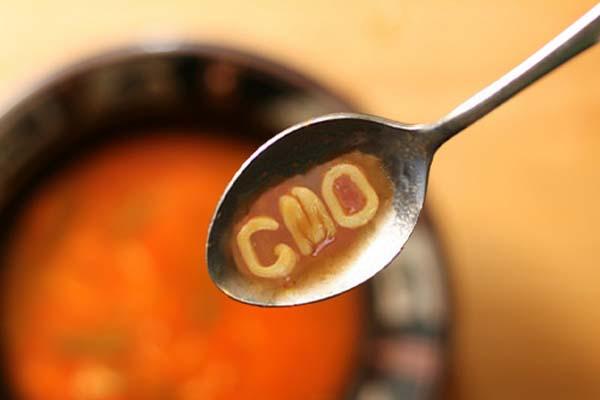 GMO soup_small